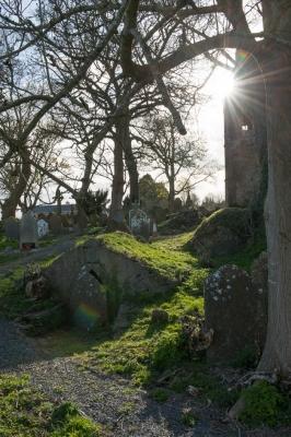12. St. John's Graveyard, Knockalney, Co. Limerick, 2013. Archival pigment print.