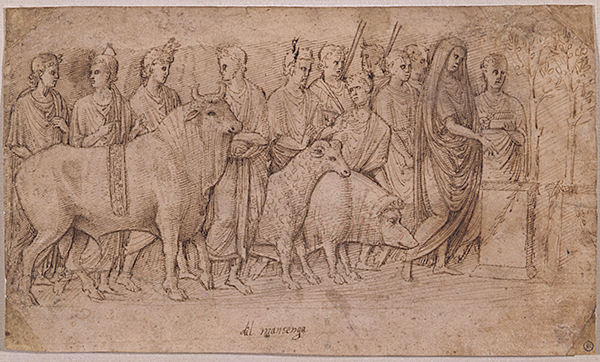 Italian, Paduan School, 15th Century, Study after the Suovetaurilia Relief. Photo Michael Miller.