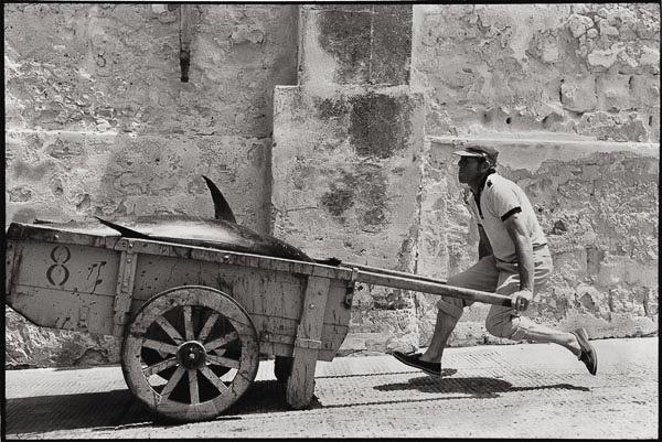 Leonard Freed, Sicilia 1975