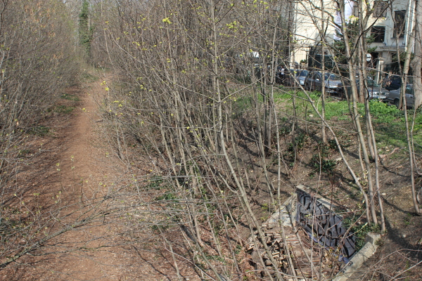 La Petite Ceinture, 16e, late-March. Photo © 2012 Alan Miller.
