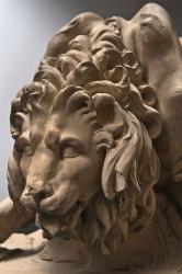 Fig. 4. Gian Lorenzo Bernini, Model for the Lion on the Four Rivers Fountain, 1649–50. Terracotta. Accademia Nazionale di San Luca, Rome, 258. Detail.