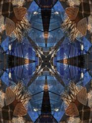 blueroseofvenice-1-iii_